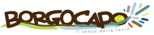 Logo-Borgocapo14